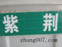 紫荊(jing)種子(zi)